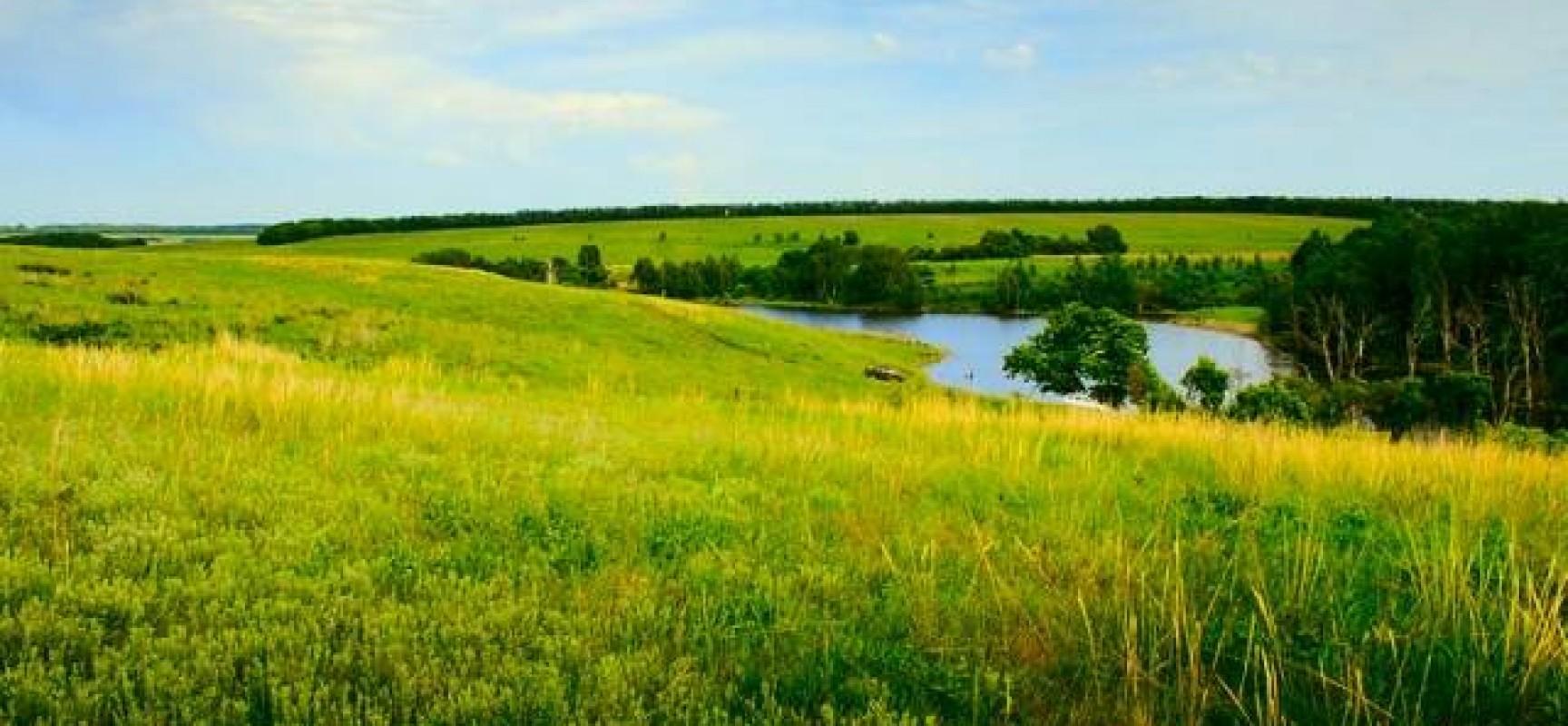 Правительство Крыма утвердило перечень специальностей, обладатели которых могут получить бесплатный земельный участок